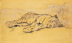 Eugène Delacroix, Jeune tigre couché, plume, encre noire et aquarelle, 1830.