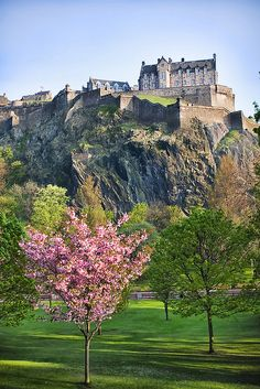 Cherry blossom tree on meadow at hill with ancient castle, edinburgh castle in scotland — tourist attraction, travel photography - stock photo Scotland Castles, Scottish Castles, Beautiful Castles, Beautiful Places, The Places Youll Go, Places To See, Edinburgh Castle, Visit Edinburgh, Famous Castles
