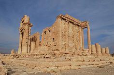 Palmyra Save Palmyra #Palmyra #Syria #SavePalmyra