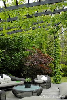 garden architecture Run wires up and across the top of the pergola, this allows an abundance of climbers to cling on and gives secrecy plus sweet smelling scents Outdoor Pergola, Outdoor Rooms, Backyard Patio, Backyard Landscaping, Outdoor Living, Pergola Kits, Pergola Ideas, Pergola Lighting, Pergola Roof