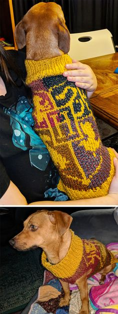 Free Knitting Pattern for Hogwarts House Pup Dog Sweater - Harry Potter inspired. Free Knitting Pattern for Hogwarts House Pup Dog Sweater - Harry Potter inspired dog sweater with Hogwarts School Crest . Baby Knitting Patterns, Crochet Blanket Patterns, Free Knitting, Knitting Ideas, Vintage Knitting, Free Crochet, Harry Potter Sweater, Harry Potter Crochet, Knitted Dog Sweater Pattern