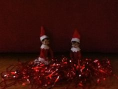 My elves are so cute!!!