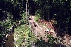 Trail ride through Prospect Park at Kensington Stables