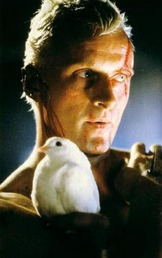 Rutger Hauer in Blade Runner,a 1982 American dystopian science fiction action film directed by Ridley Scott and starring Harrison Ford, Rutger Hauer, and Sean Young.