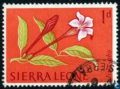 Sierra Leone - Flowers 1963