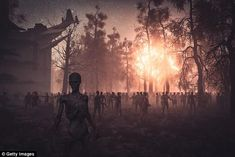 Australia's most vulnerable cities in a zombie apocalypse revealed   Daily Mail Online