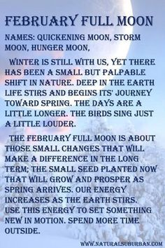 Full Moon Tea, Full Moon Names, New Moon Rituals, Full Moon Ritual, February Full Moon, Full Moon Meaning, Full Moon Meditation, Moon Date, Moon Witch