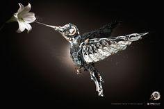 36711_BIRD PRINT.jpg 2,756×1,837 pixels