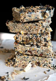 Healthy all natural recipe for winter bird feed. Healthy all natural recipe for winter bird feed. Bird Suet, Diy Bird Feeder, Suet Cake Recipe, Feeding Birds In Winter, Suet Cakes, How To Attract Birds, Backyard Birds, Garden Birds, Garden Totems