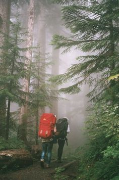 Let's Go For A Hike