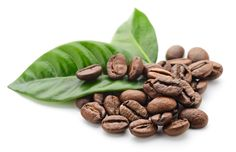 Taking Kratom with Coffee is true synergism. Kratom and Coffee are psychomotor stimulants that act primarily to stimulate the central nervous system (CNS). Coffee Zone, Green Mountain Coffee, International Coffee, Green Coffee Bean Extract, Coffee Drinkers, Belleza Natural, Coffee Beans, Asparagus, Health