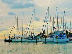 Florida Sea Base  Islamorada, Florida  :)
