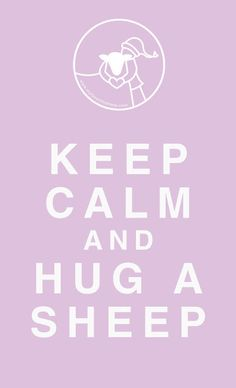 keep calm and hug a sheep