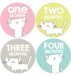 Cat Baby Month Stickers