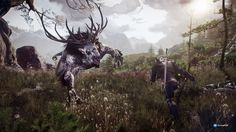https://www.durmaplay.com/tr/store/the-witcher-3-wild-hunt/buy/game-of-the-year-edition
