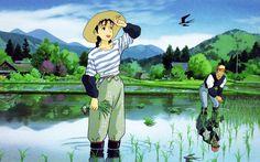 Studio Ghibli's-Only Yesterday