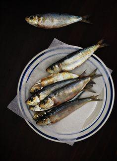 Herring, another idea for a print, see other blue plate design. Dessert Original, Fish Design, Plate Design, Scandinavian Food, Healthiest Seafood, Fish And Seafood, Fish Recipes, Food Styling, Food Art