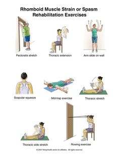 Physiotherapy Exercises For Back Pain Physiotherapy Exercises for Shoulder Pain http://premierhealth.weebly ...