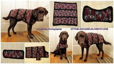 Top+10+Cute+DIY+Dog+Sweaters+(With+Free+Crochet+Patterns)