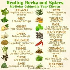 Medicinal herbs and spices chart ! Super easy cheesy <-- but don't eat cheese.