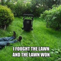 Handsome Lawn Service