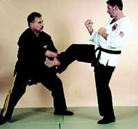 10 Kenpo Karate  Laws Every Martial Artist Should Know