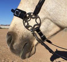 The Horse's Hoof - A Bitless-Bit for Dressage/High School Riders