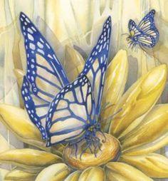 """Butterfly Magic…Dreams of Transformation"" Jody Bergsma"