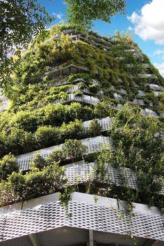 Vertical Garden, Berlin street in Barcelona.