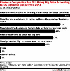 Research from 1010data conducted by uSamp found that a majority of US business executives said their companies were not using Big Data becau...
