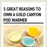 Infographic: 5 Great Reasons to Own a Gold Canyon Pod warmer