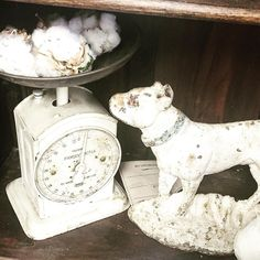 I love white! This Antique Hughes Family English Salter scale and RARE antique bulldog door stop are dreamy white. The tiny bits of rust mixed with pink and blue are Pantone perfect!  #lavenderroadantiques #marburger #roundtop #etsyseller #etsyshop #salterscales #hughesfamilyscale #bulldog #antiquedoorstop #castiron #doorstop #allwhite #cottage #farmhousestyle #industrialdesign #antiques #antiquescale #pantone