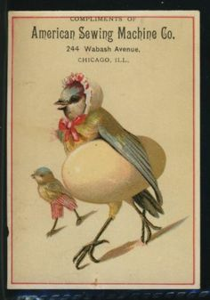 Victorian Trade Card American Sewing Machine Co Bird with Egg
