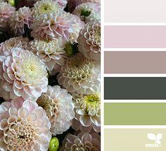Flora Hues | fresh hues  | Bloglovin'