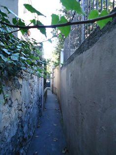 sentier des Merisiers - Paris 12e