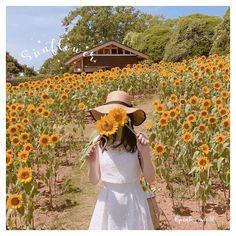 Cute Korean Girl, Tumblr Girls, Ulzzang Girl, Kawaii Anime, My Outfit, Lightroom, Eye Candy, Poses, Sunflowers