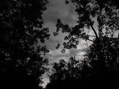 Storm's a coming!!!! Netley Creek Manitoba..