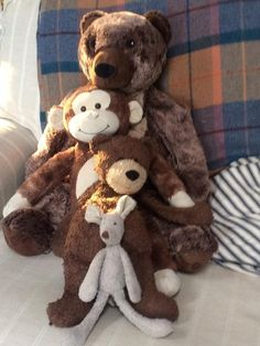 Lost on 25 Jun. 2016 @ St Werburghs, Bristol. Most favourite Jellycat mouse lost this weekend in Bristol. He is not looking quite as clean he he does in this picture and tail has nearly fallen off. I have one very sad little boy, please help! Visit: https://whiteboomerang.com/lostteddy/msg/j5ap55 (Posted by Geraldine on 26 Jun. 2016)