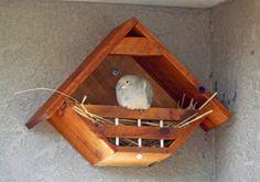 Lovey Dovey Original  Birdhouse Dovehouse by LoveyDoveyBirdhouses,
