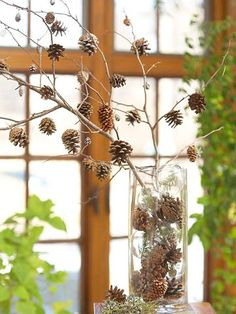 glass vase with pinecones and bare branch hung with pinecones