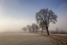 Vi är alla på väg På vägen I vägen Ur vägen Av vägen  #jonas_fotograf #fotograf #dagensbild #corren #icu_landscape #ignature #igsweden #igsweden #igscandinavia #sweden #mistyfoggymilkymoody #misty #swedishmoments #sweden_photolovers #linköpinglive #landskap #landsväg #landscape #springiscoming #spring #ilovesweden #visitlinköping #visitsweden