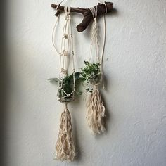 Houseplant ideas. This whimsical macrame hanger on driftwood can display air plants, succulents, and the latest cuttings from the garden. By House Sparrow Fine Nesting.