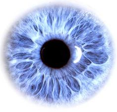 Premiumstech is a hub for Health tips Science and tech news Discoveries and lots more, Tips to maintain or improve your Eye Health and Vision Doll Eyes, Doll Face, Pretty Eyes, Beautiful Eyes, Amazing Eyes, Illustration Free, Art Illustrations, Realistic Eye Drawing, Eye Close Up