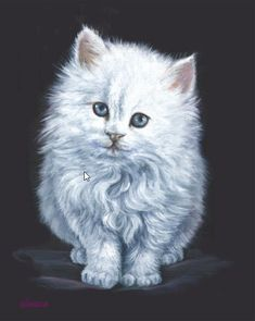 Art Apprentice Online - Downloadable Painting Pattern - Angel Eyes White Kitten - Acrylic by Glenice Moore $7.95 (