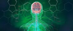 Can Medical Marijuana Ease the Development of Parkinson's disease?