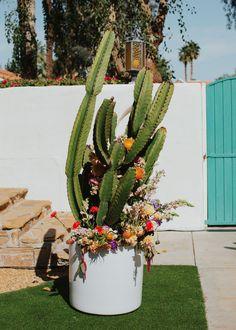 Beach Ceremony, Wedding Ceremony, Elegant Flowers, Beautiful Flowers, Flower Wall, Cactus Flower, Disco Ball, Green Wedding Shoes, Ceremony Decorations