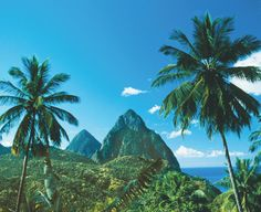 Let the Pitons be your wedding backdrop at Sandals Grande St Lucian | St Lucia Destination Weddings | St Lucia Attractions | Sandals Resorts Weddings