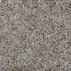 Home Decorators Collection Carpet Sample - Dress Up II - Color Hugo Texture 8 in. x 8 - The Home Depot Shag Carpet, Wall Carpet, New Carpet, Bedroom Carpet, Modern Carpet, Rugs On Carpet, Carpets, Frieze Carpet, Plush Carpet