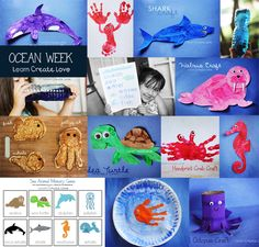 Ocean Crafts & Activities from http://learncreatelove.com