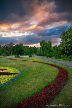 Timisoara – Botanical Park, Romania